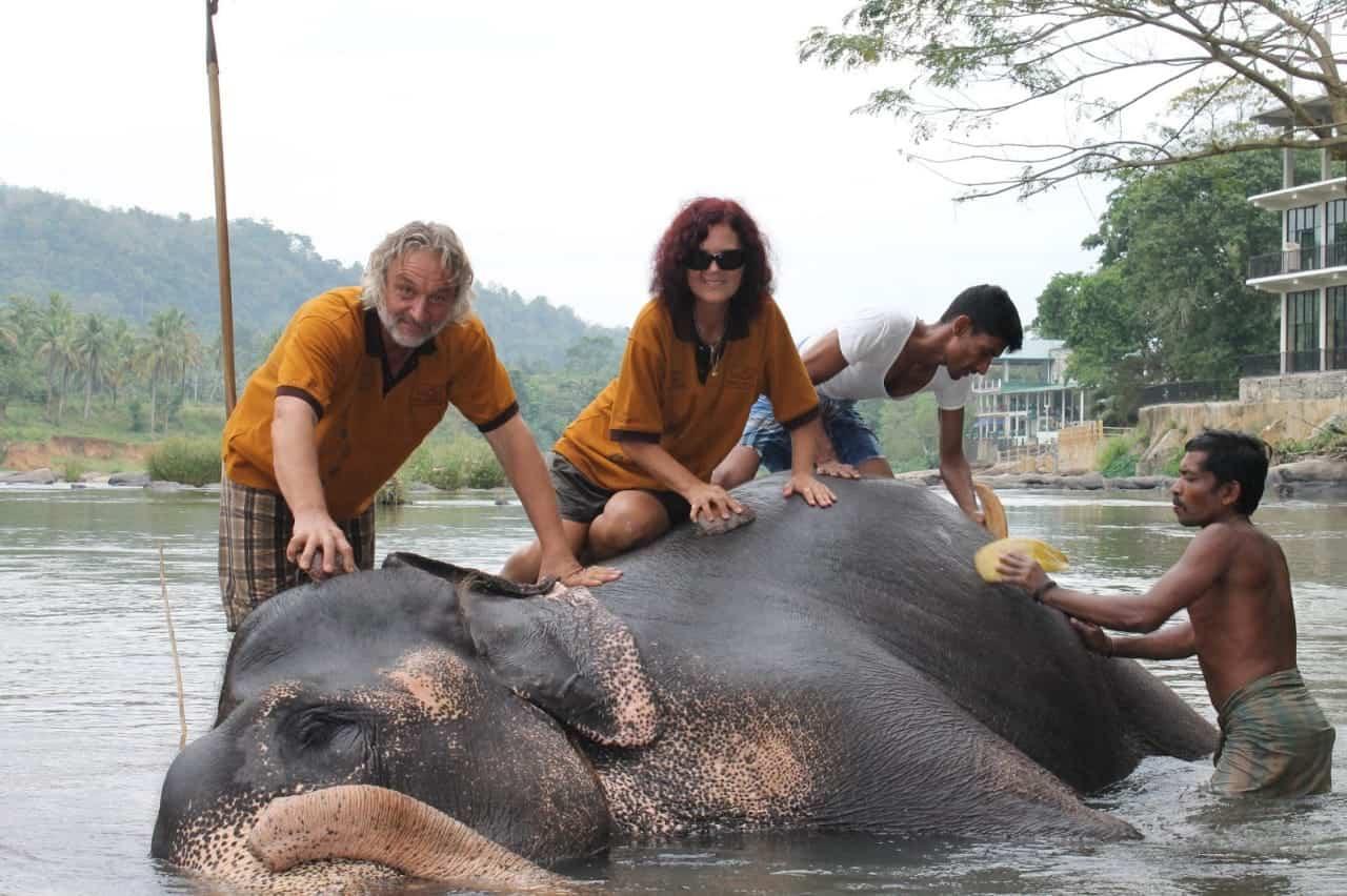 pinnawala_elephant_wowtovisit