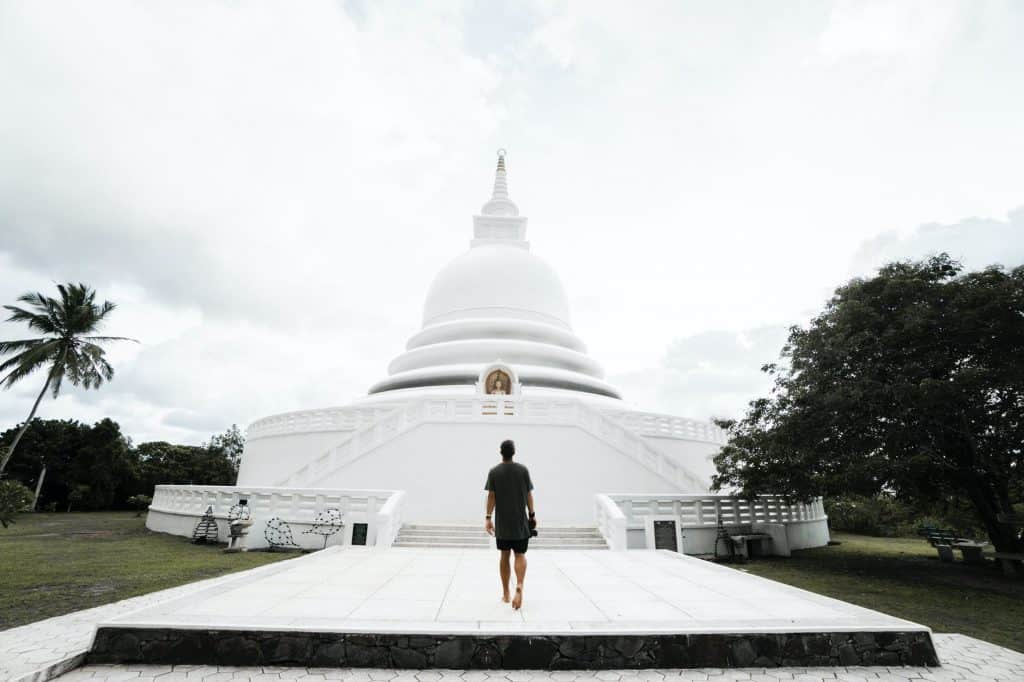 unrecognizable man walking towards japanese peace pagoda