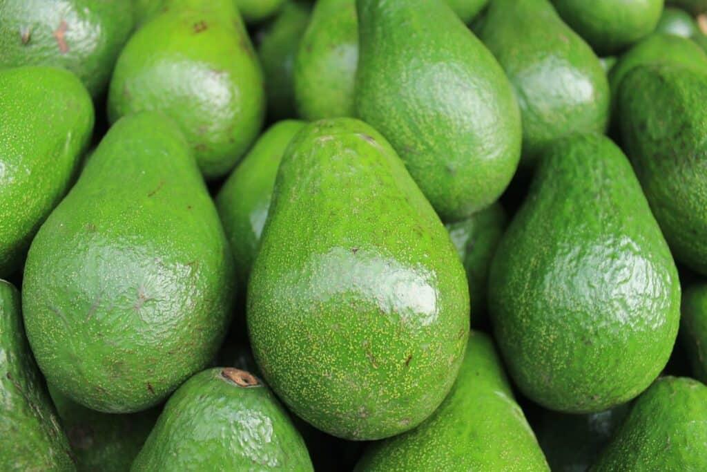 Health Benefits of 7 Unique Fruits_avacado