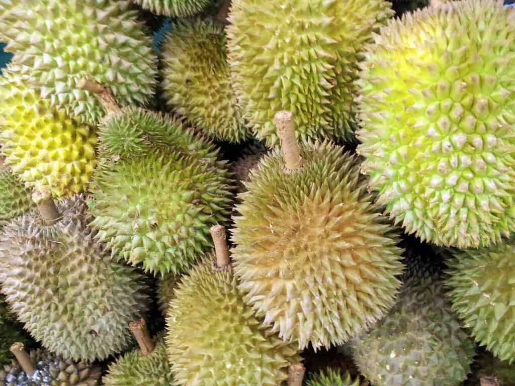 Health Benefits of 7 Unique Fruits_durian